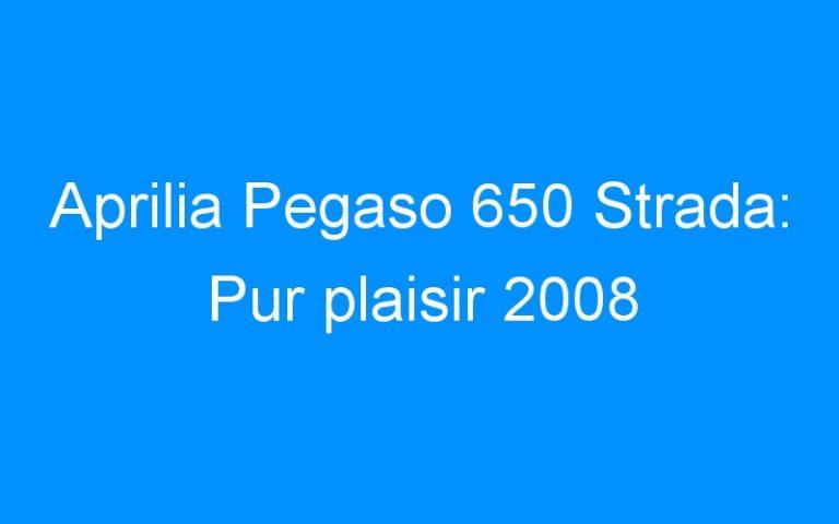 Aprilia Pegaso 650 Strada: Pur plaisir 2008