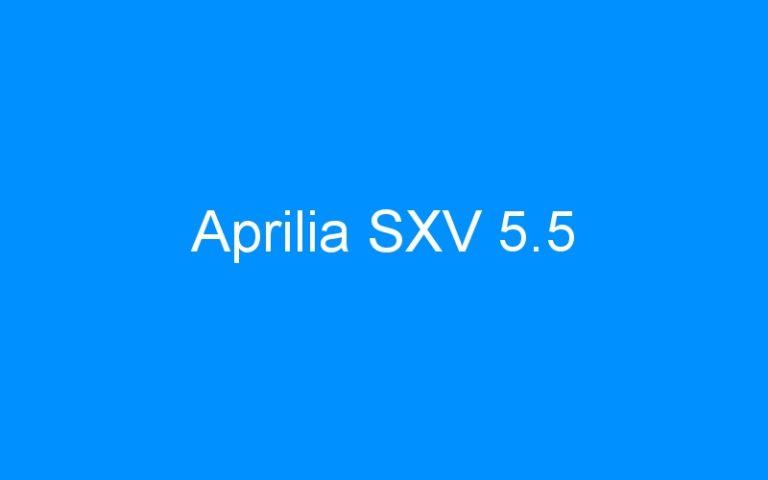 Aprilia SXV 5.5