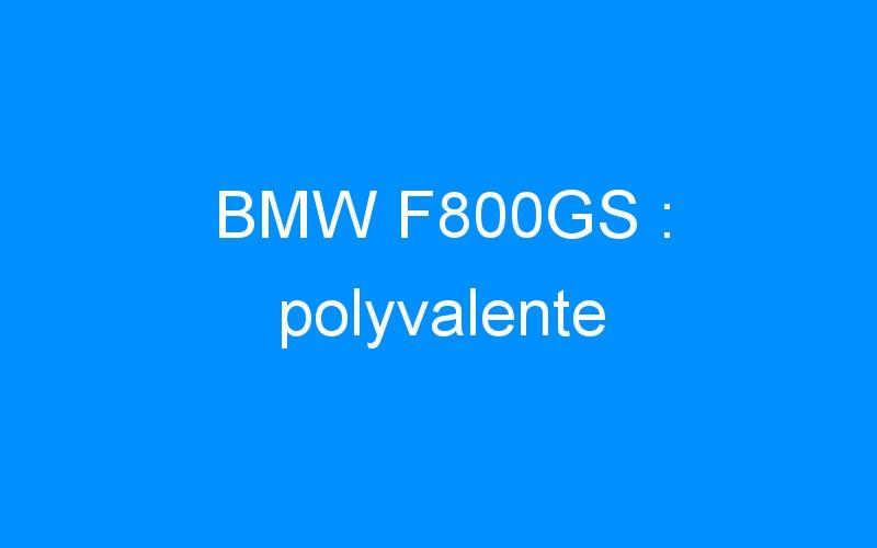 BMW F800GS : polyvalente