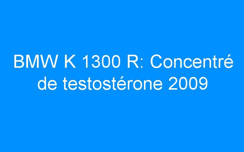 BMW K 1300 R: Concentré de testostérone 2009