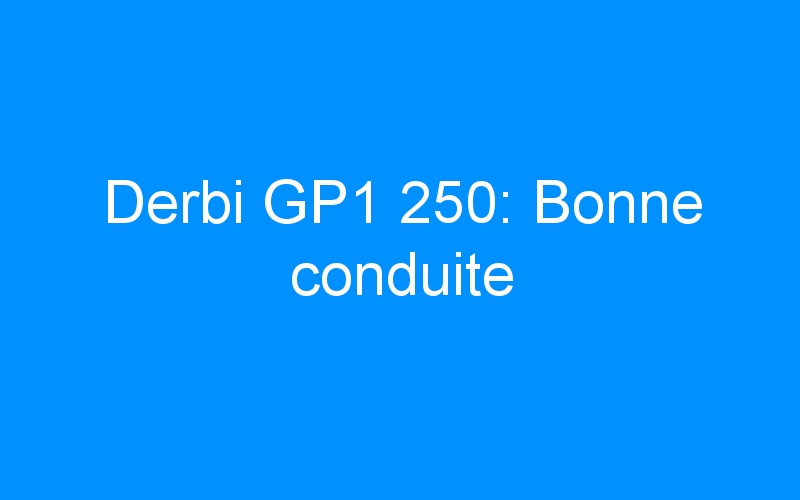 Derbi GP1 250: Bonne conduite