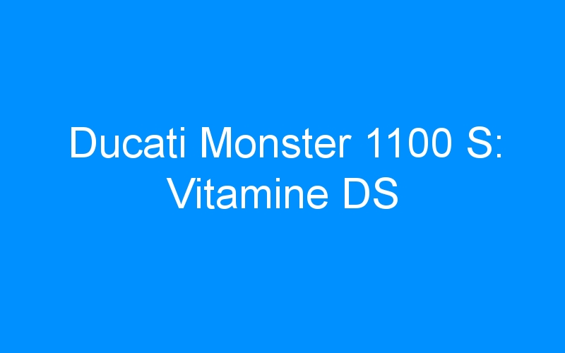 Ducati Monster 1100 S: Vitamine DS
