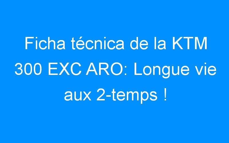 Ficha técnica de la KTM 300 EXC ARO: Longue vie aux 2-temps !