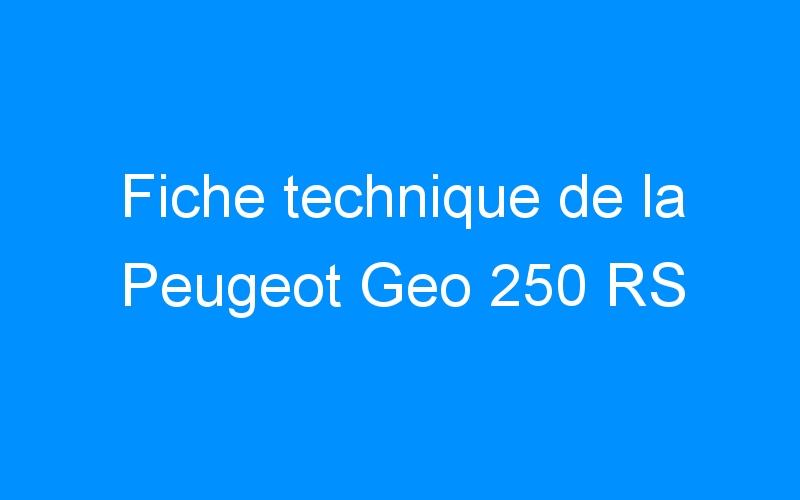 Fiche technique de la Peugeot Geo 250 RS