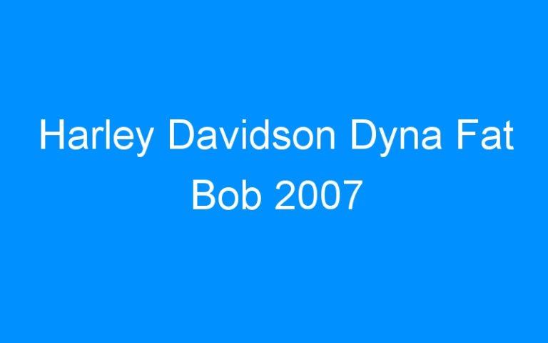 Harley Davidson Dyna Fat Bob 2007