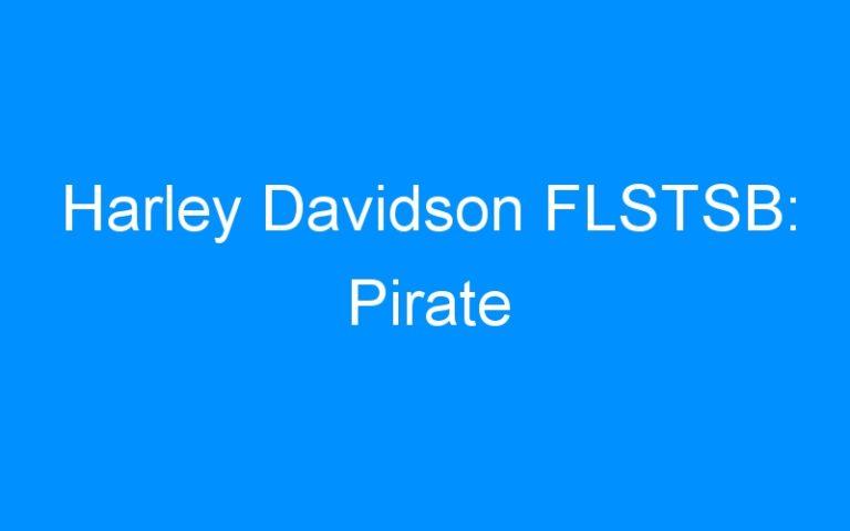 Harley Davidson FLSTSB: Pirate