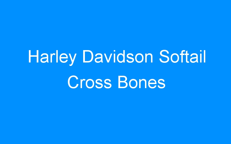 Harley Davidson Softail Cross Bones