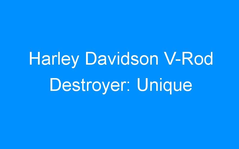 Harley Davidson V-Rod Destroyer: Unique