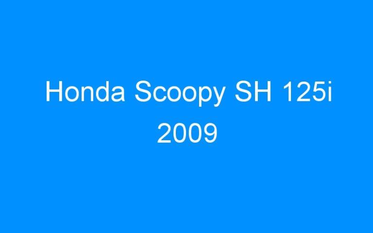 Honda Scoopy SH 125i 2009