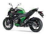 Kawasaki z800 2013