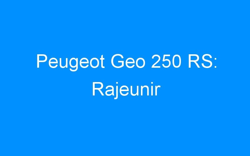 Peugeot Geo 250 RS: Rajeunir