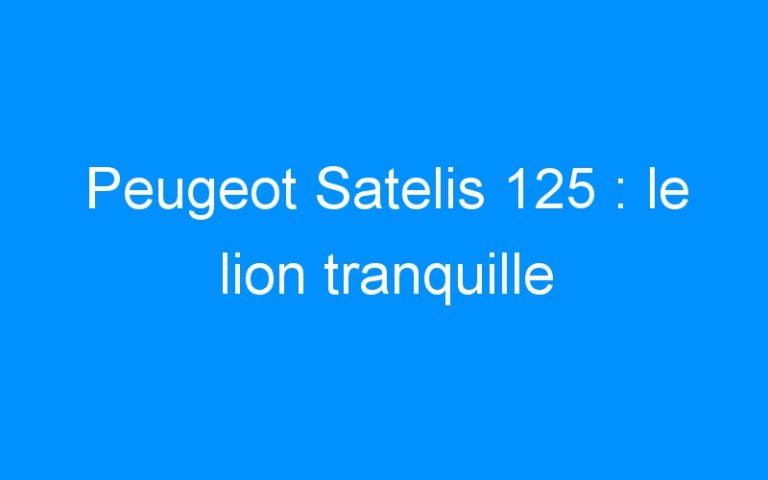 Peugeot Satelis 125 : le lion tranquille