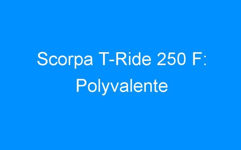 Scorpa T-Ride 250 F: Polyvalente