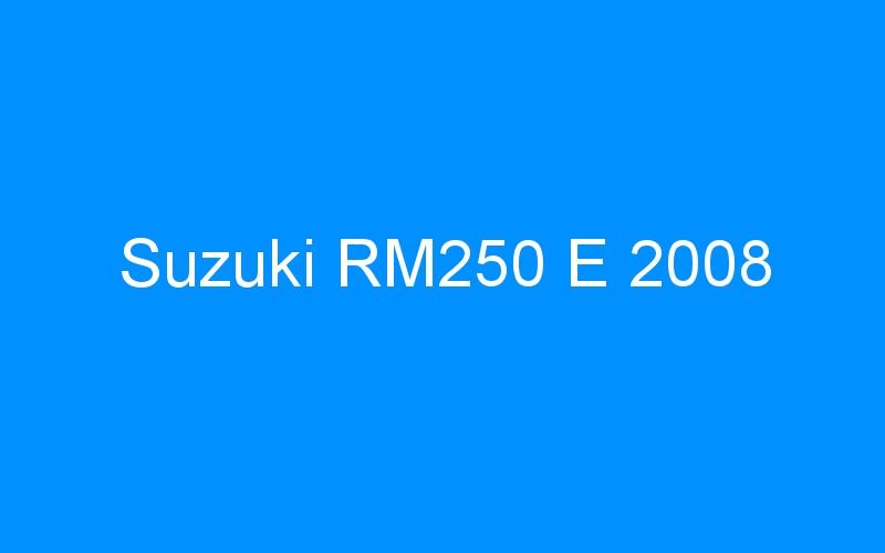 Suzuki RM250 E 2008