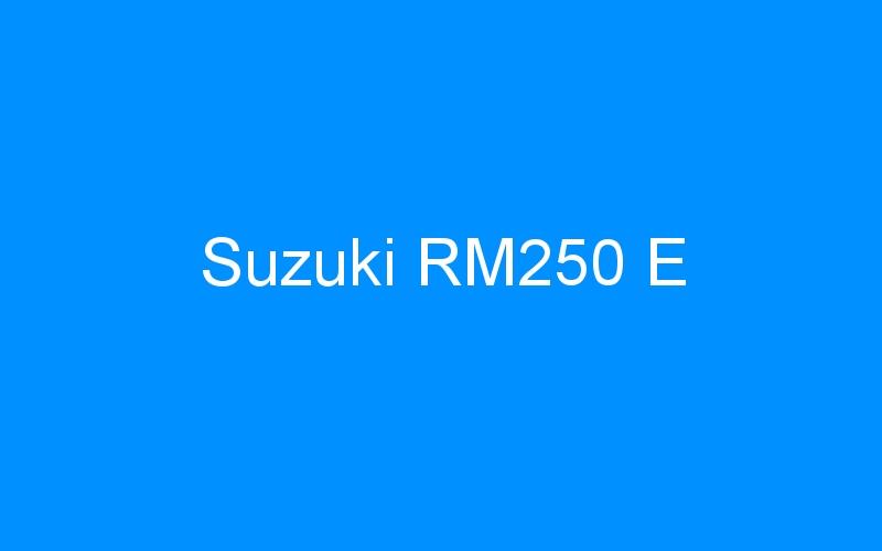 Suzuki RM250 E