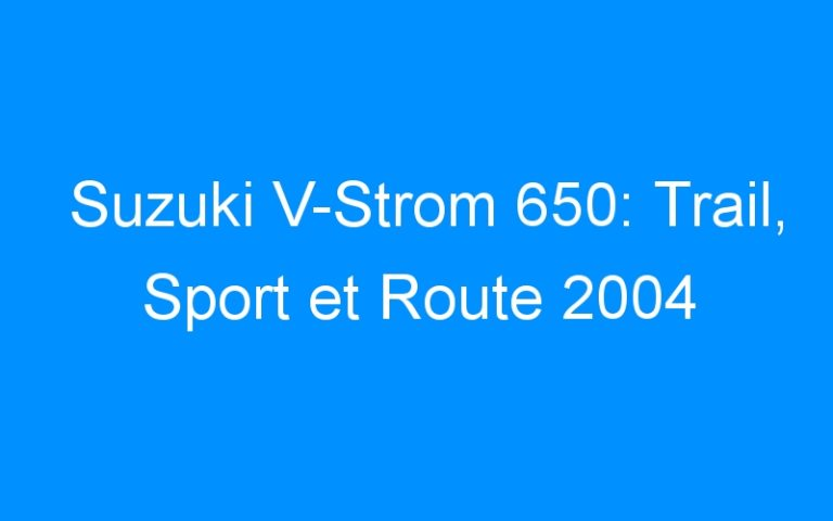 Suzuki V-Strom 650: Trail, Sport et Route 2004