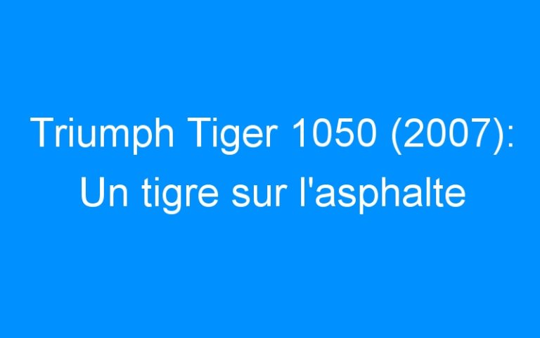 Triumph Tiger 1050 (2007): Un tigre sur l'asphalte