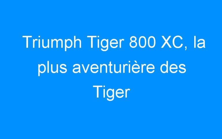 Triumph Tiger 800 XC, la plus aventurière des Tiger