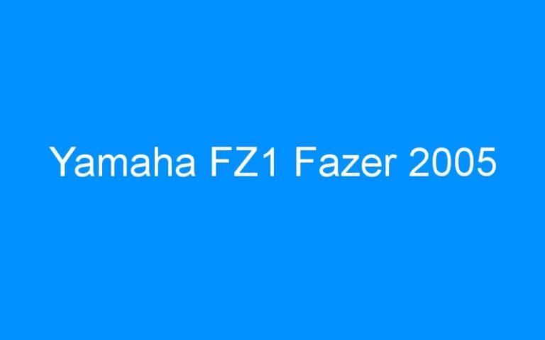 Yamaha FZ1 Fazer 2005