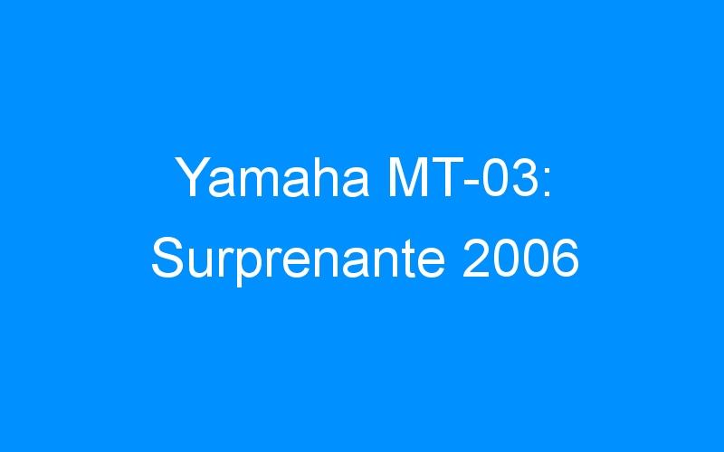 Yamaha MT-03: Surprenante 2006